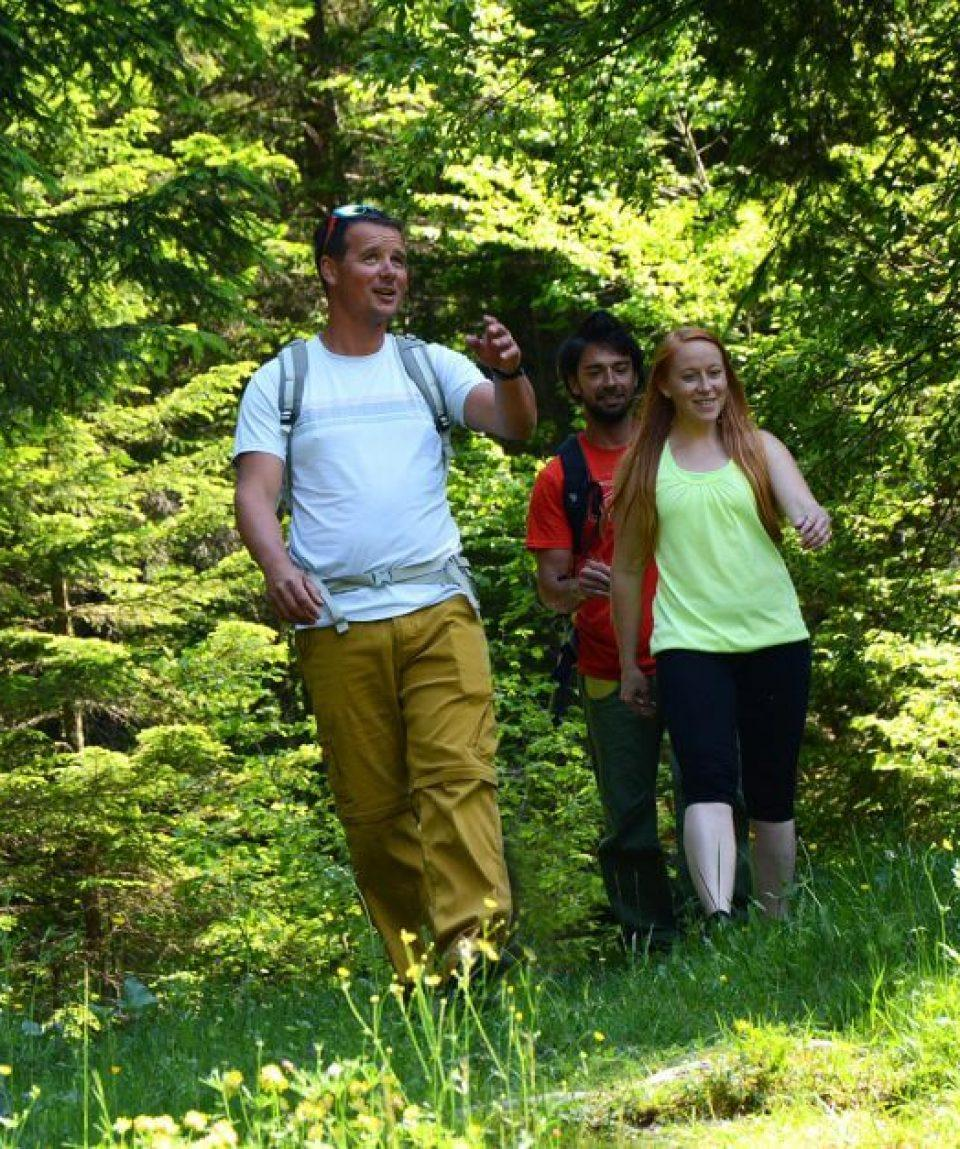 walking_hiking_life_adventures_slovenia_self_guided_hoiliday-960x627