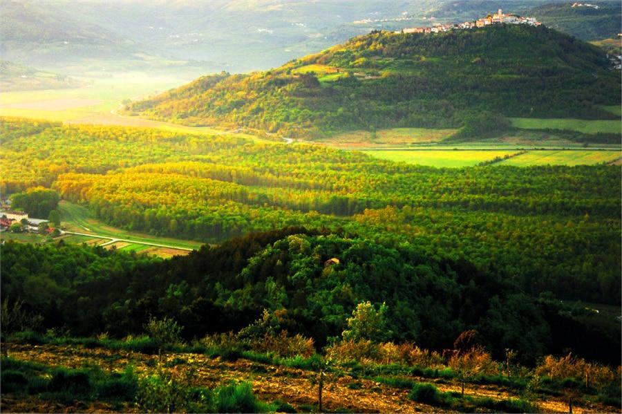 Istria Ultimate Gourmet Getaway – Croatia