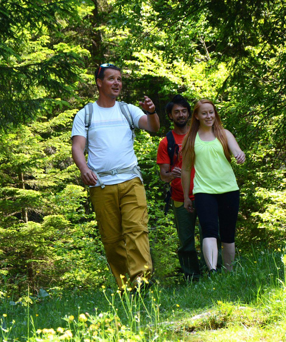 walking_hiking_life_adventures_slovenia_self_guided_hoiliday