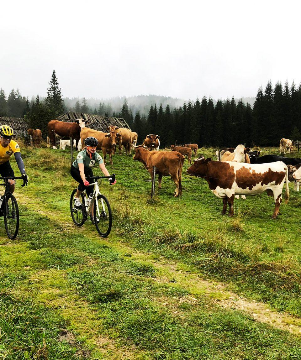 adventure_cycling_slovenia_bike_gravel_01
